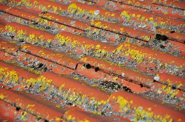 החלטתם לשפץ את גג הבית לבד?