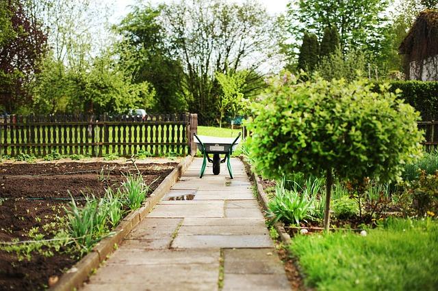 שיפוץ הגינה: המוצרים שאתם חייבים לרכוש!
