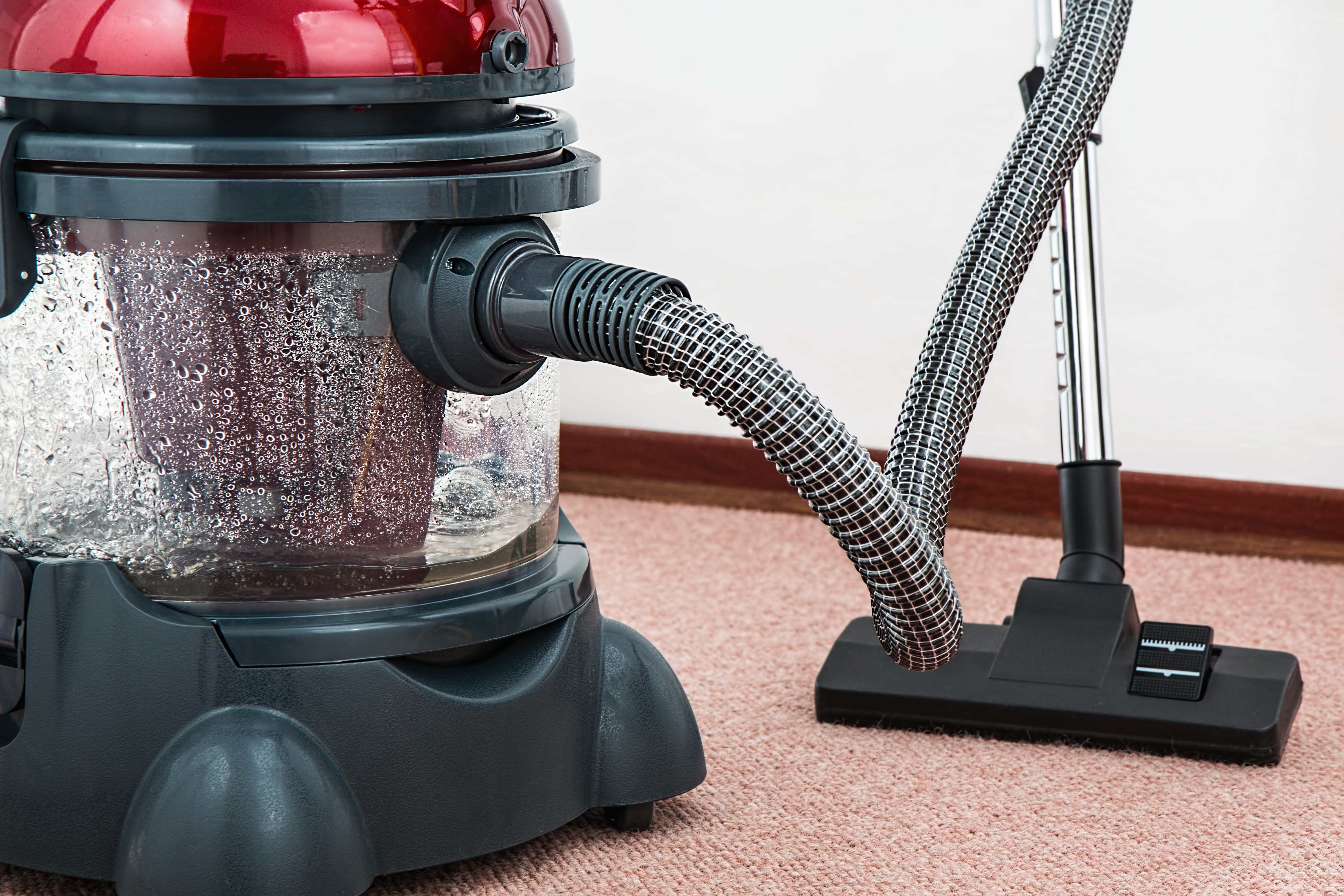 כמה עולה לנקות שטיח מקיר לקיר?